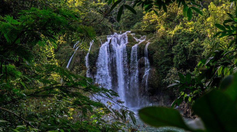 Haití. Parque Nacional Natural de Macaya