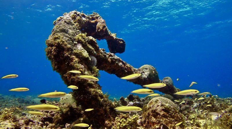 Expedición del Corredor Biológico en el Caribe (CBC) y Fundación Albatros Media con el apoyo de ONU Medio Ambiente y la Unión Europea. Haití (Del 4 al 12 de abril/2019)