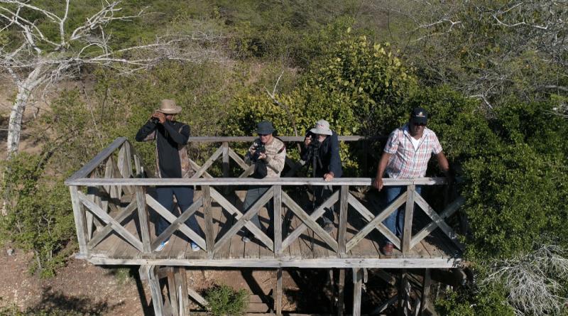 Expedición del Corredor Biológico en el Caribe (CBC) y Fundación Albatros Media con el apoyo de ONU Medio Ambiente y la Unión Europea. República Dominicana (Del 8 al 15 de julio/2019)