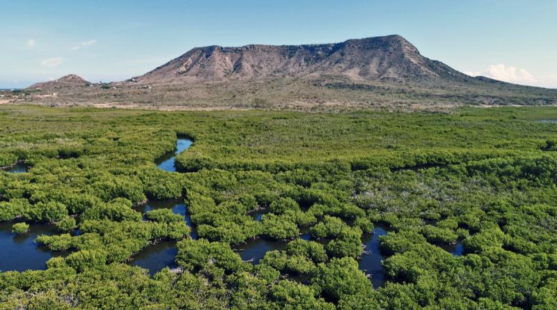 República Dominicana. Parque Nacional Estero Balsa