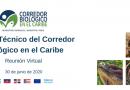 Comité Técnico del Corredor Biológico en el Caribe. 30 de Junio de 2020. Reunión Virtual