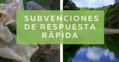 BIOPAMA lanza convocatoria para Subvenciones de Respuesta Rápida en respuesta a crisis por COVID-19