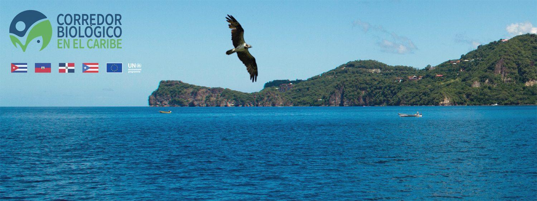 Corredor Biológico en el Caribe